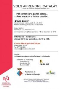 Cartell curs català
